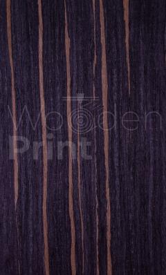 Эбен-MN-28-021