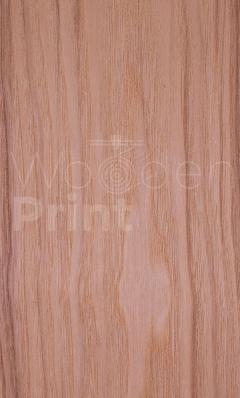 Ясень-оливковый