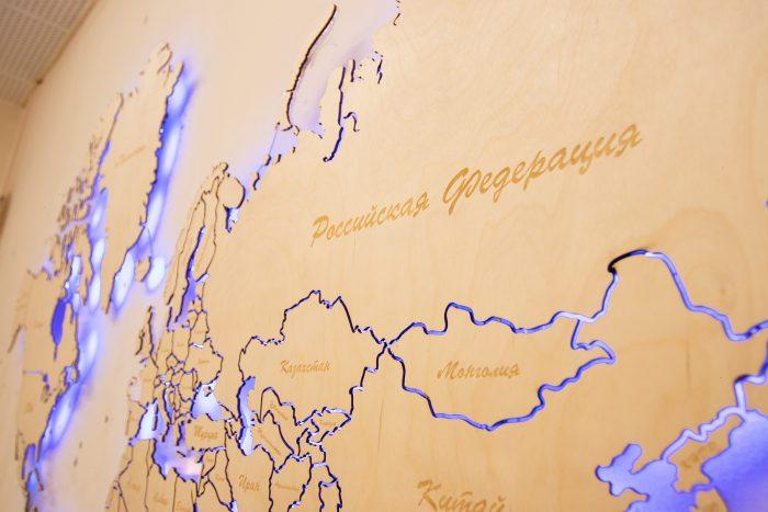 Настенная Карта Мира из Березы с подсветкой. Россия