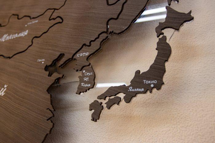 Настенная карта мира из шпона Файн-Лайн Эбен 069SM с полным зазором и УФ-печатью